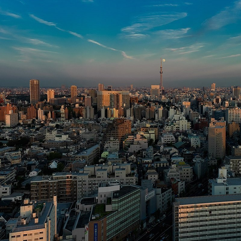 11 attrazioni a Tokyo poco conosiute dai turisti - Bunkyo-ku
